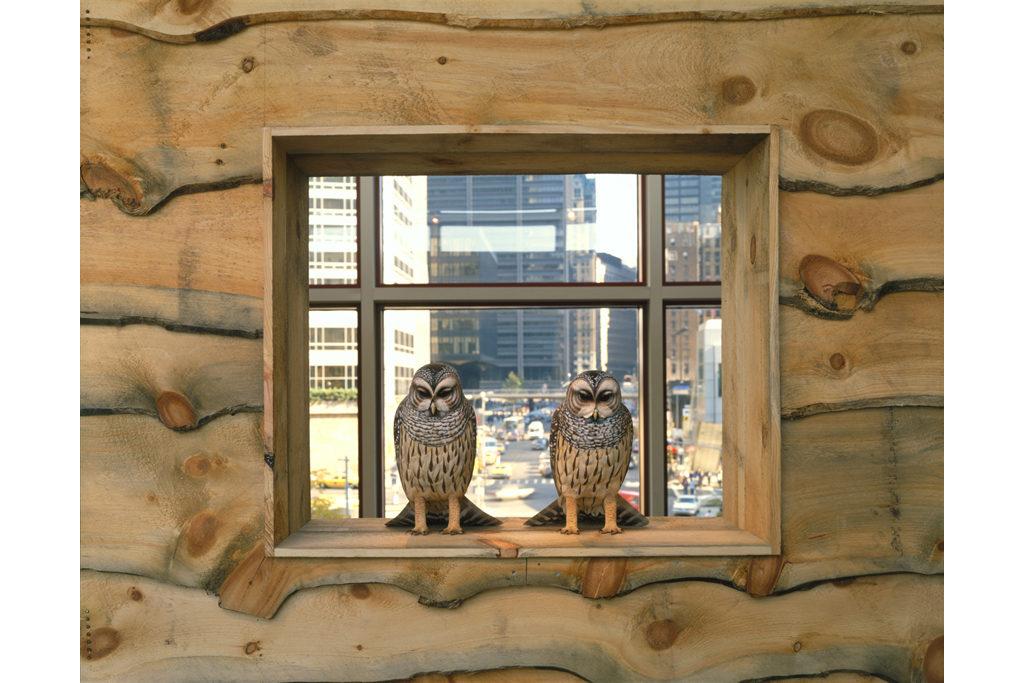 Adirondack tableau birds